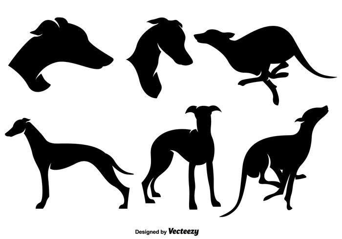 700x490 Stylized Silhouettes Of Whippet Dog Silhouettes