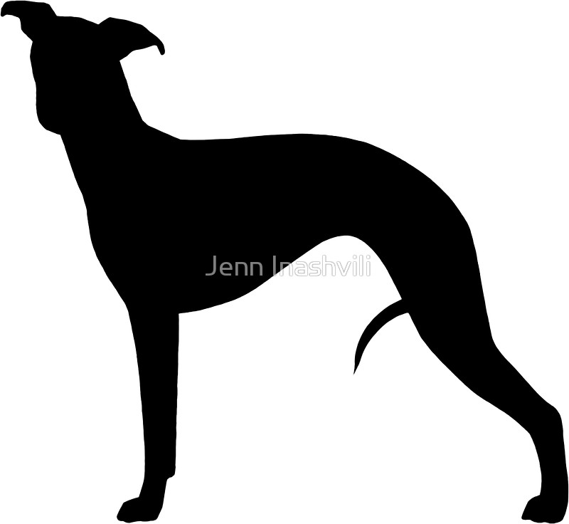 800x736 Whippet Silhouette(S) Stickers By Jenn Inashvili Redbubble