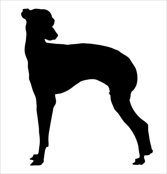 554x576 Whippet Silhouette Wall Decal By Wilsongraphics On Zibbet