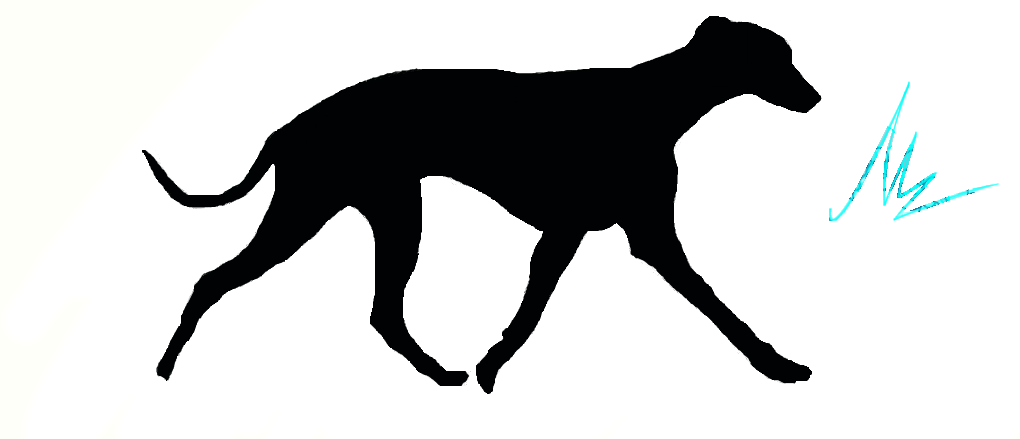 1020x439 Whippet Silhouette By Mel1661