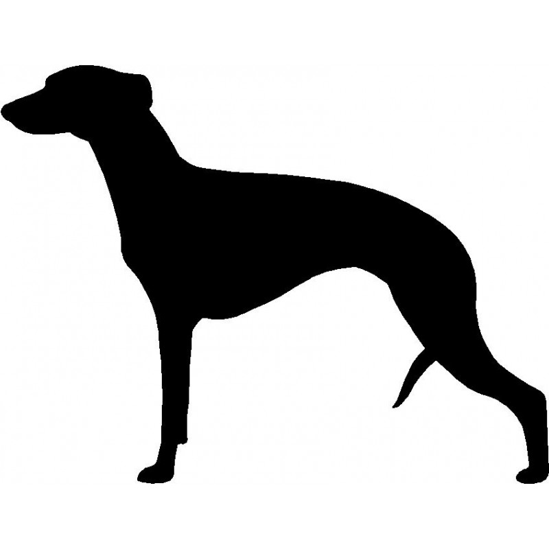 800x800 Dog Breed Silhouette Wall Hanging Magnetic Memo Whippet