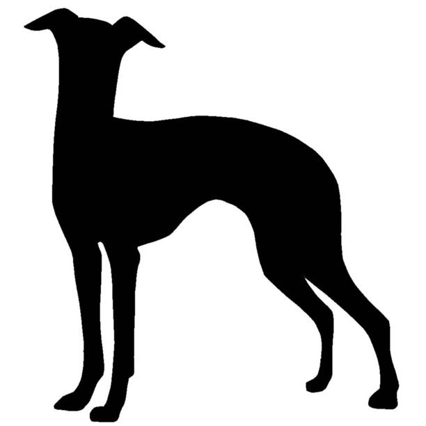 612x612 Italian Greyhound Tattoos Whippet, Silhouette And Greyhound Tattoo