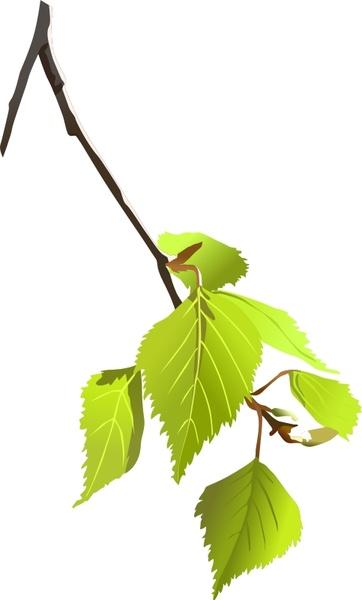 362x600 Birch Tree Svg Free Vector Download (89,287 Free Vector)
