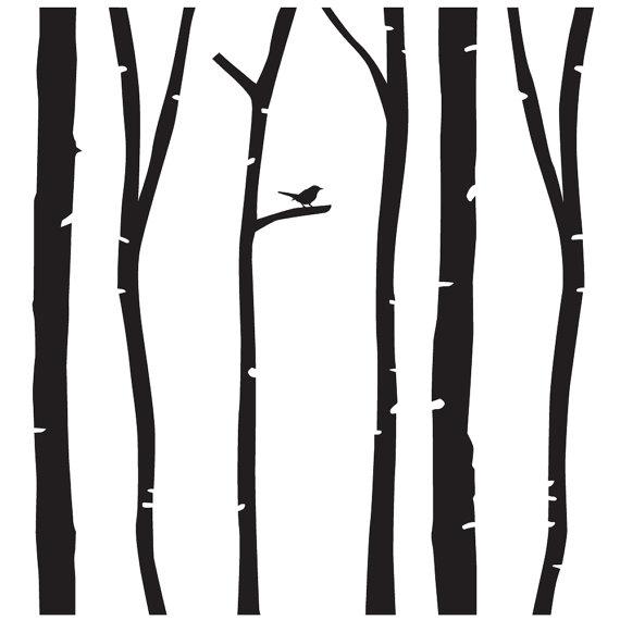 570x570 Resultado De Imagen De Birch Trees Silhouette Png Marca