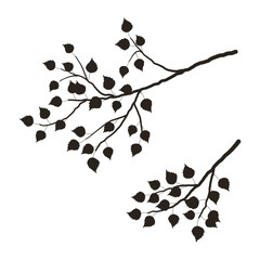 240x240 Silhouette Tree Photos, Royalty Free Images, Graphics, Vectors