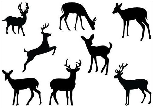 501x351 White Tailed Deer Clipart Deer Silhouette Many Interesting Cliparts