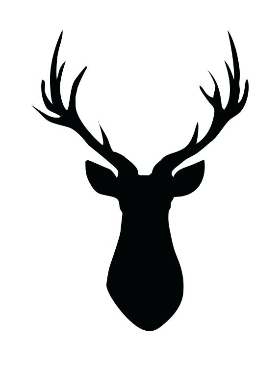 571x800 Black Deer Head Deer Head Black And White Black And White Deer