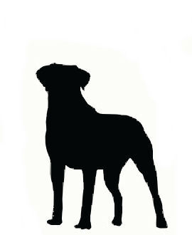 270x330 Silhouette Of Large Dog