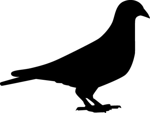 491x368 Dove Free Vector Download (109 Free Vector) For Commercial Use