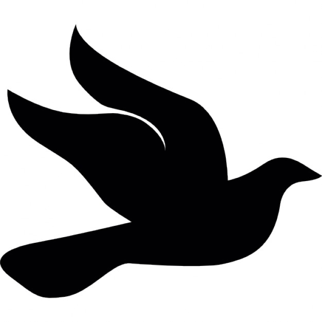 626x626 Dove Side Icons Free Download