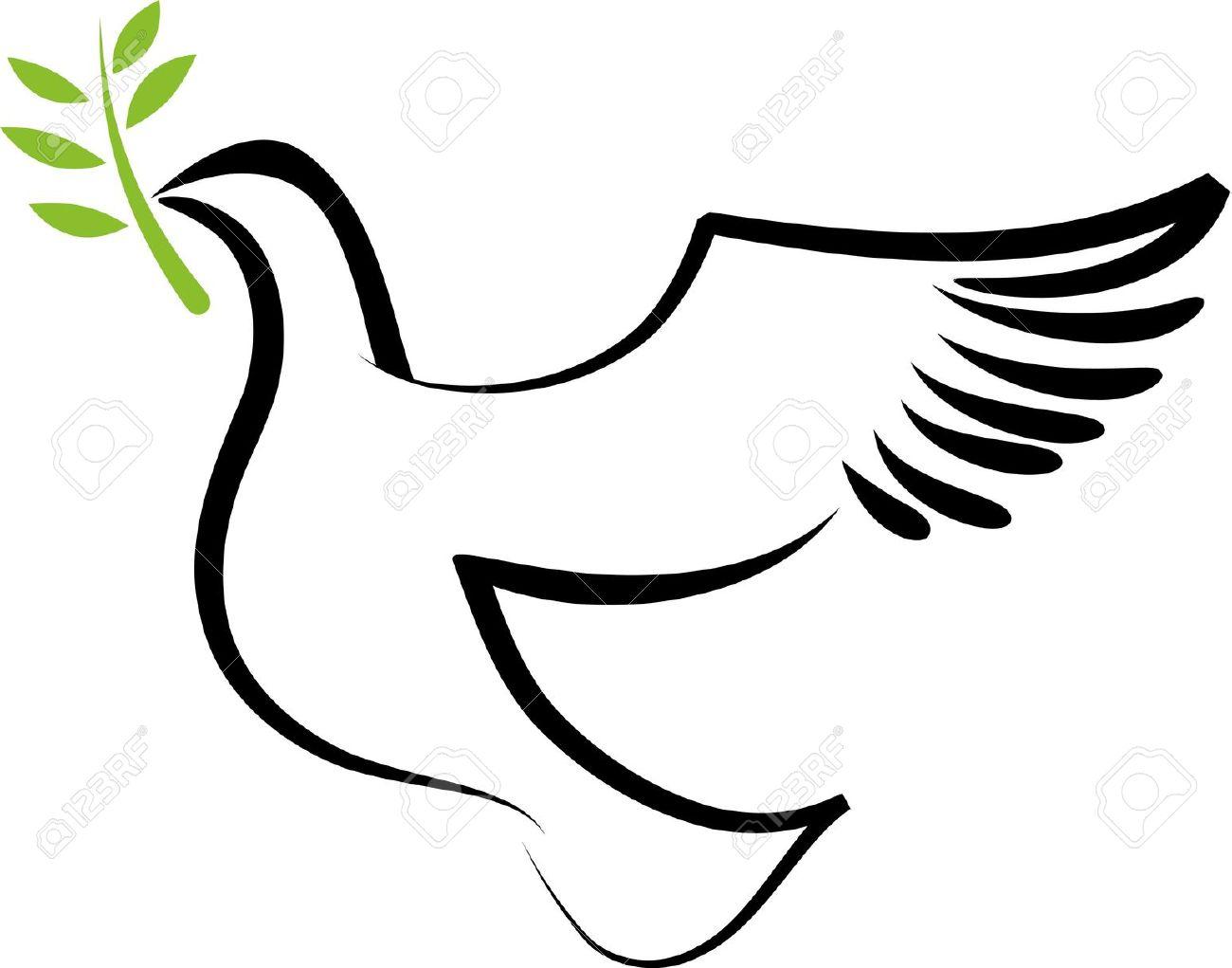 1300x1021 White Dove Clipart Olive Branch