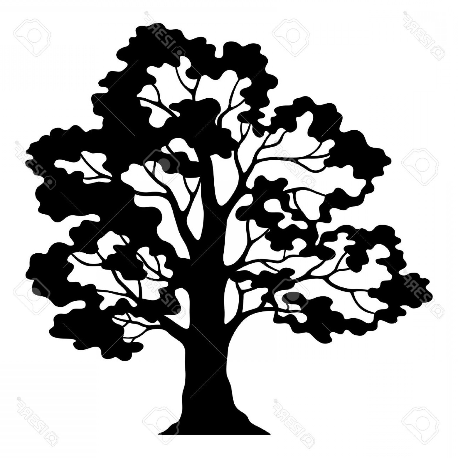 1560x1560 Photostock Vector Oak Tree Pictogram Black Silhouette And Contours