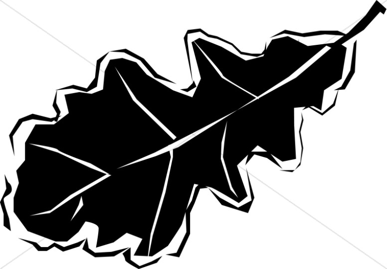 776x540 Black And White Oak Leaf Leaf Clipart