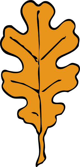 282x589 Oak Tree Clip Art Free