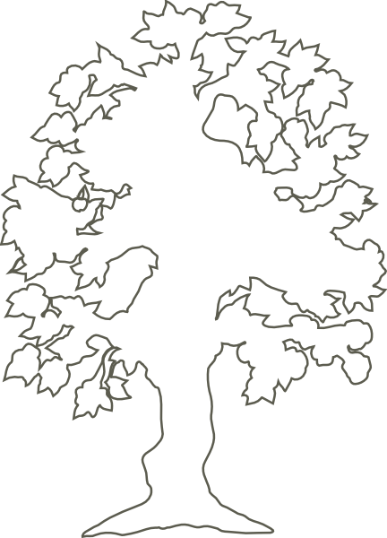 432x600 Oak Tree Outline Clipart