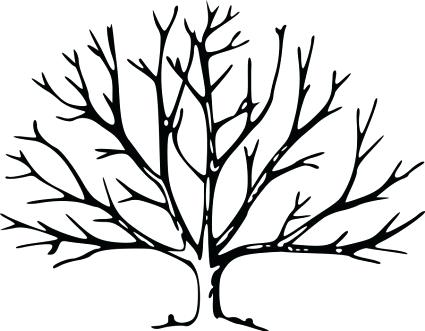 425x331 Oak Tree Outline Stock Photos Royalty Free Business Images Vector