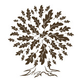 160x160 Beautiful White Oak Tree Silhouette On Green Background. Modern