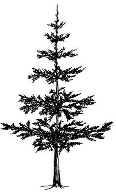 236x395 Tree Line Silhouette
