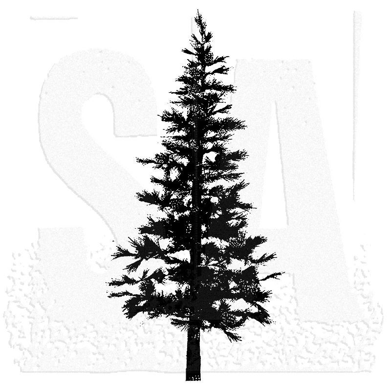 White Pine Tree Silhouette At Getdrawings Com Free For Personal