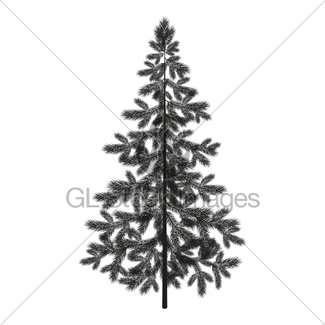 325x325 Christmas Spruce Fir Tree Silhouette Gl Stock Images