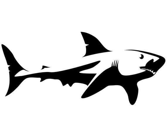 570x466 Shark Svg Shark Clipart Shark Silhouette Svg Graphics