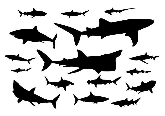 700x490 Shark Silhouette Vectors