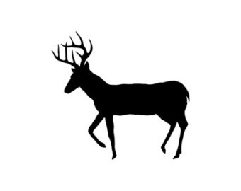 White Tail Deer Silhouette
