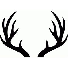 236x236 Whitetail Deer Antlers Clipart