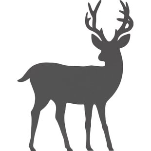 310x310 Whitetail Deer Wall Decal Wayfair