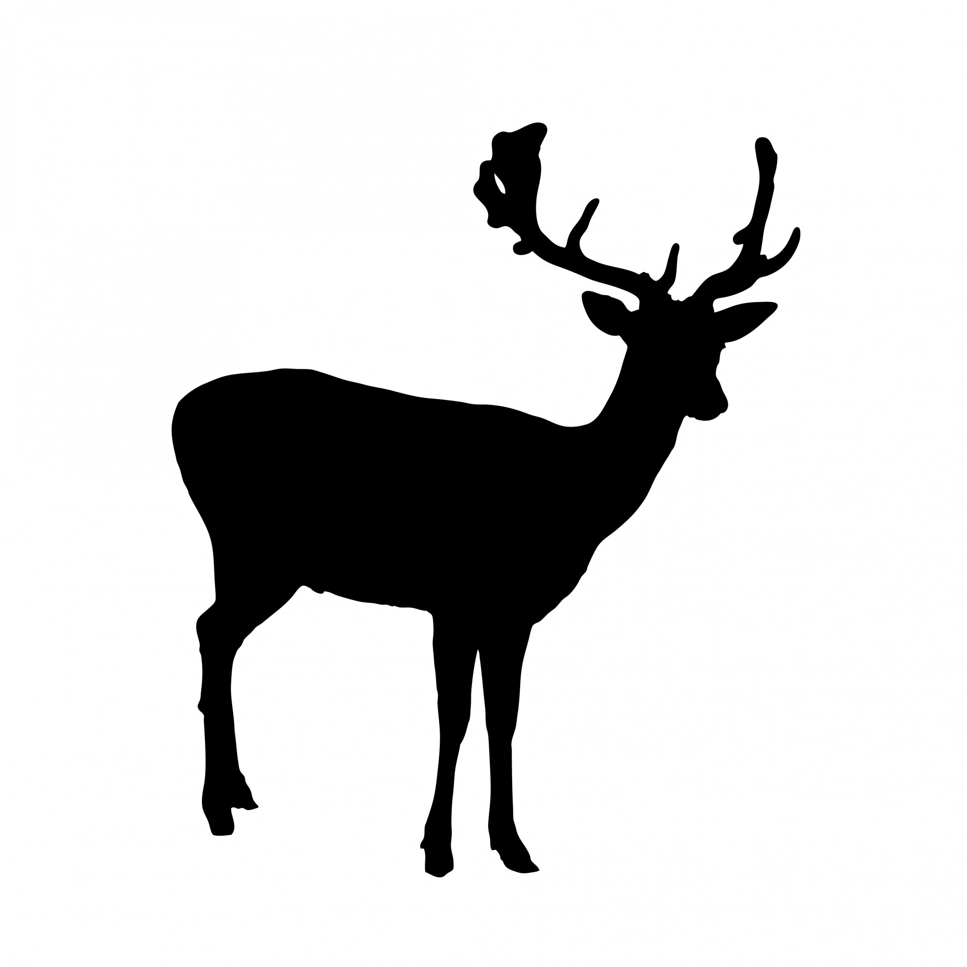 1920x1920 Deer Silhouette Clipart Free Stock Photo
