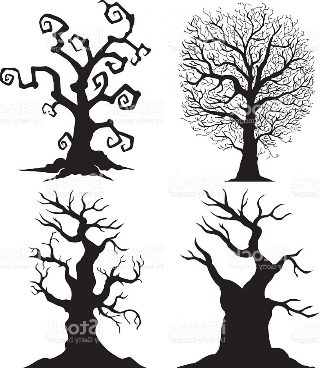 1066x1228 Scary Tree Silhouettes On The White Background Gm Createmepink
