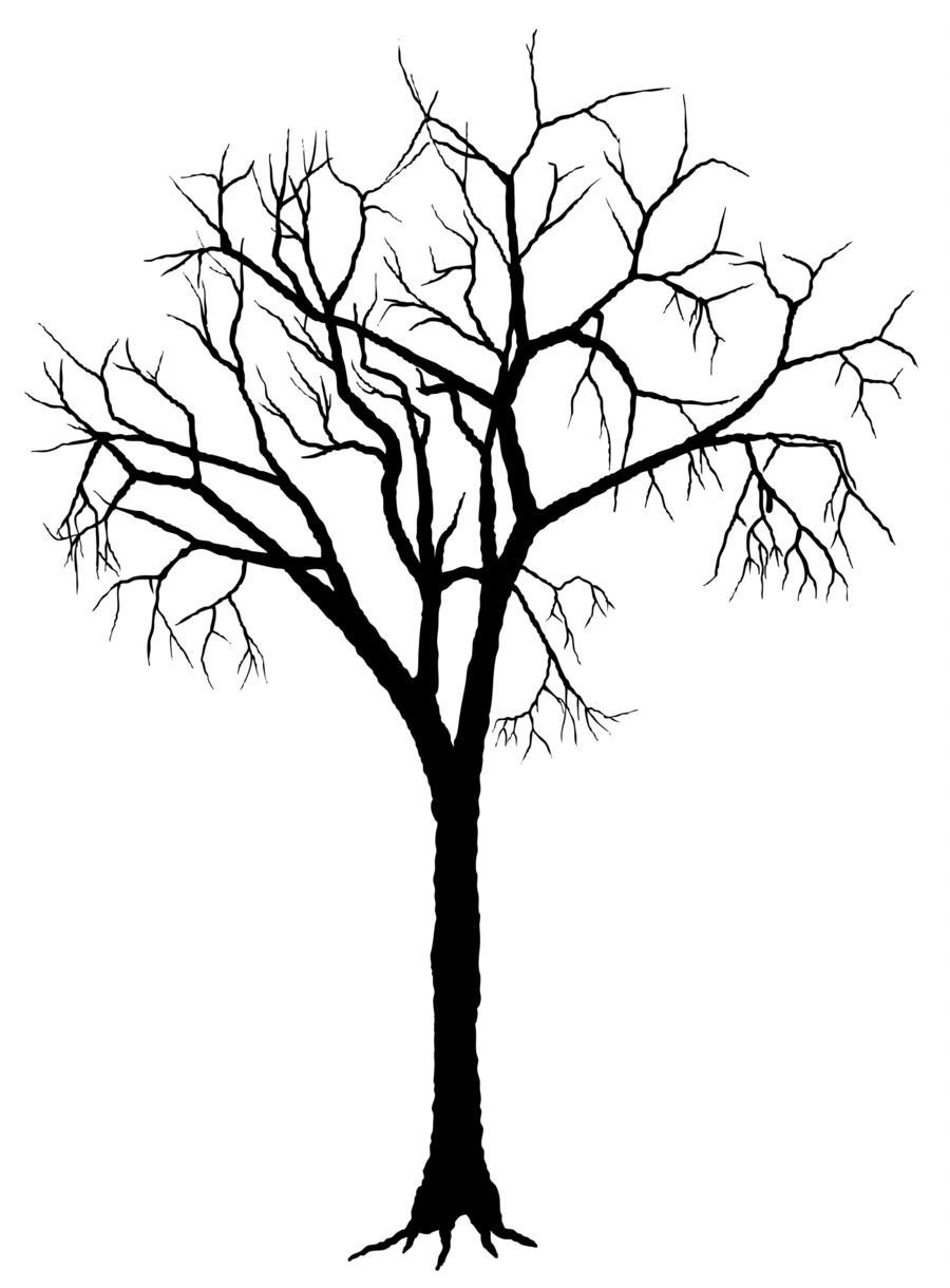 900x1220 Tree Silhouette Deciduous Clip Art