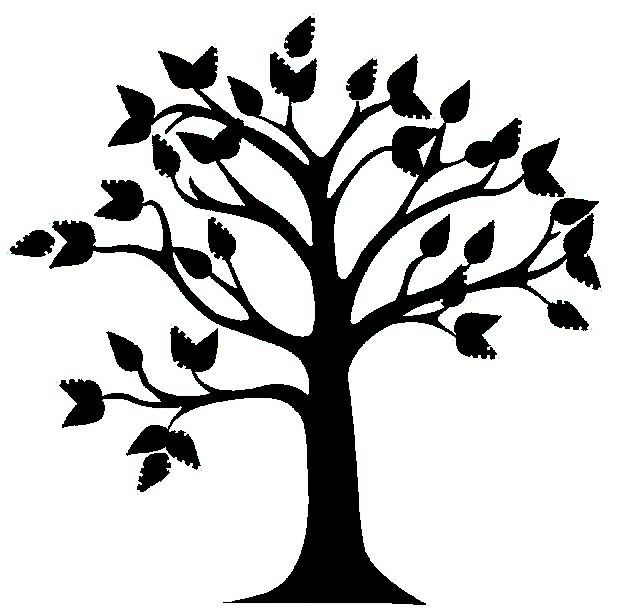 619x608 Best Tree Clipart Black And White