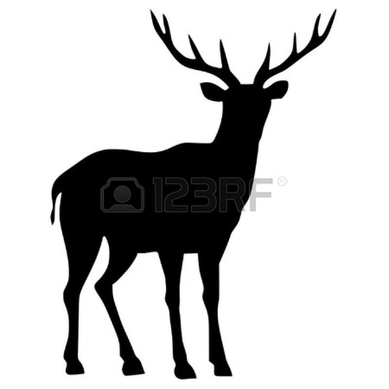 800x800 Whitetail Deer Silhouette Clip Art