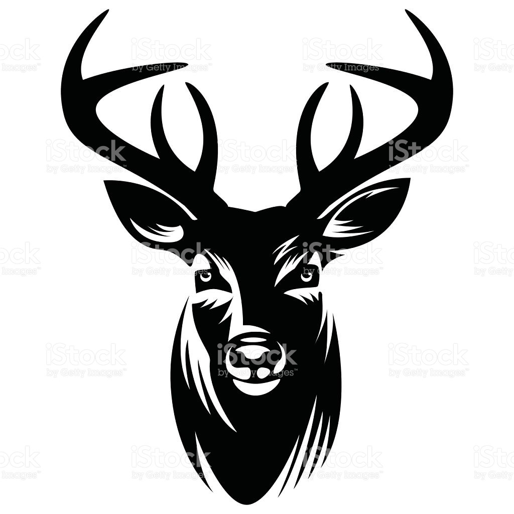 1024x1024 Best Whitetail Deer Skull Clipart Free Clip Art Images Drawing