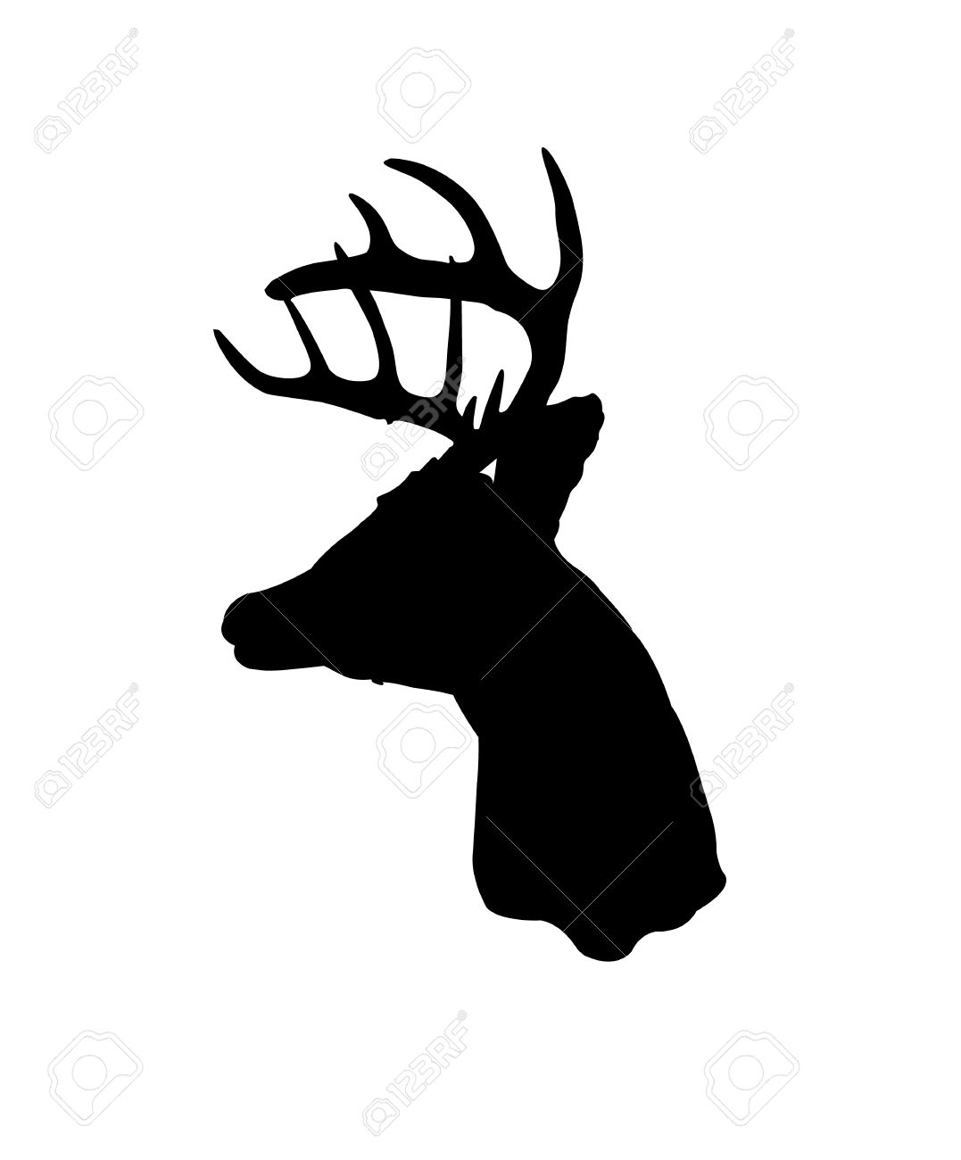 1077x1300 White Tail Head Clipart Collection