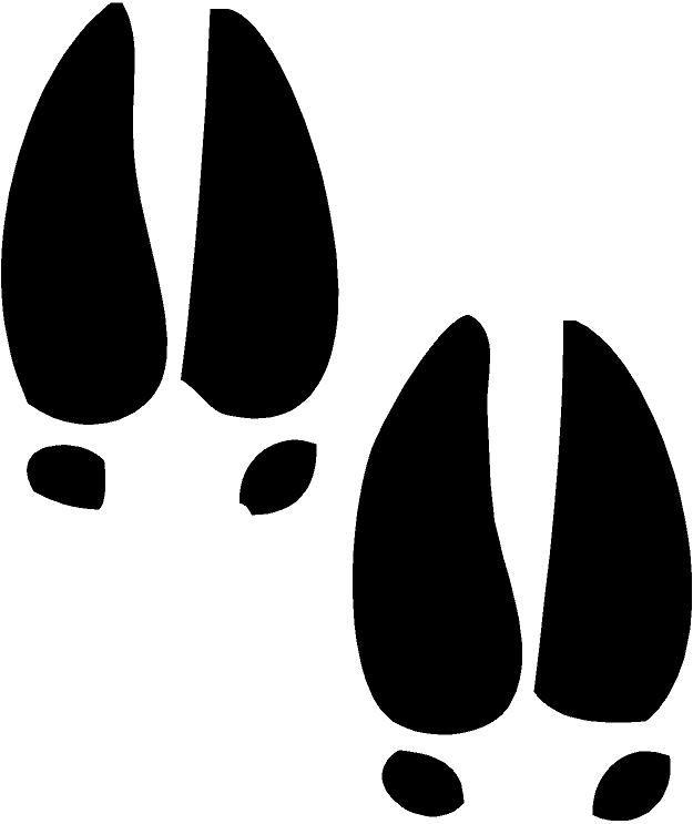 625x743 Whitetail Deer Tracks Clip Art