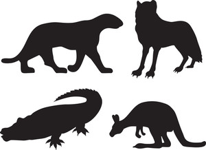 300x218 Wild Animals On White Illustration Royalty Free Stock Image