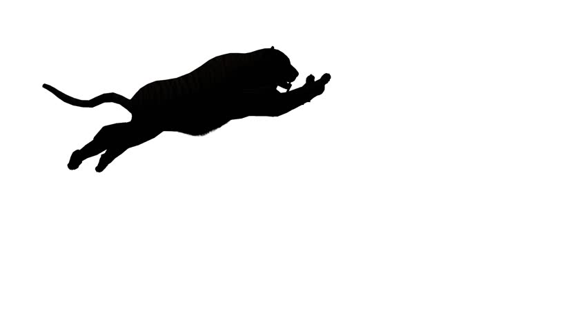 852x480 Lion Run,endangered Wild Animal Wildlife Running Sketch Silhouette