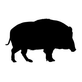 270x270 Wild Boar Silhouette Stencil Free Stencil Gallery