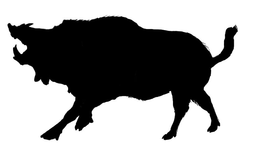 836x506 Boar Head Silhouette I Revised The Boar To Look Icons Symbols