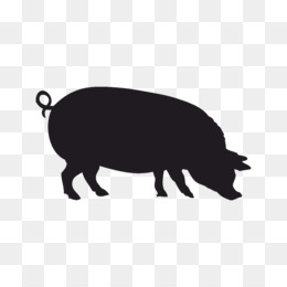 260x260 Boar Png And Psd Free Download