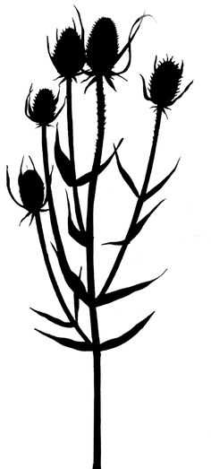 236x523 Best Flower Silhouette Ideas Flower Stencils