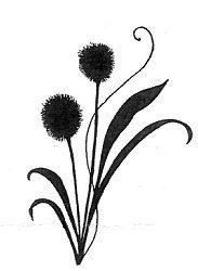 183x250 Monochrome Queen Anne's Lace Silhouette Printables And Tags
