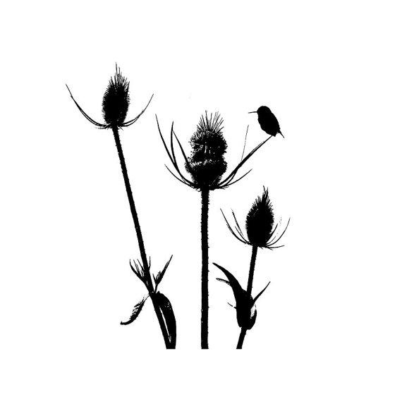570x570 Wildflower Bird Black White Silhouette Art Print Minimalist