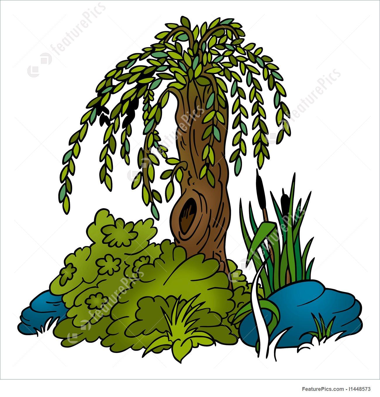 1300x1360 Plants Willow Tree