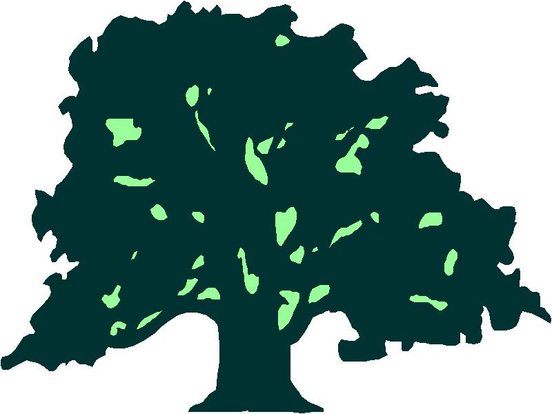 800x600 Willow Tree Clip Art