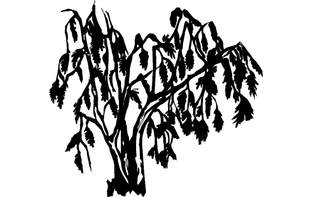 1002x633 Willow Tree Dxf File Free Download