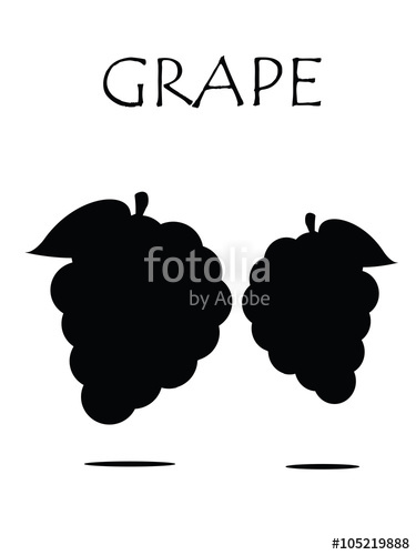 375x500 Grapes Vector Isolated. Icon.logo. Grapes Wine. Grapes Vine. Green