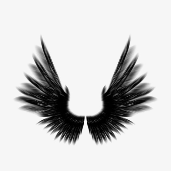 564x564 Wing, Black Wings, Wings Silhouette Png Image And Clipart For Free
